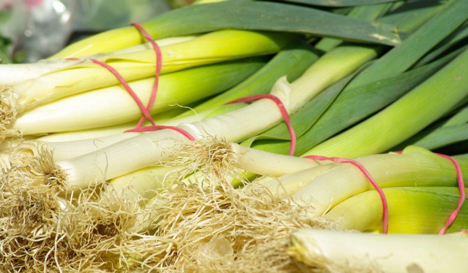 The Secret of Prebiotic foods & fiber